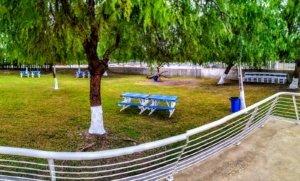 nuevas zonas de estudio y reposo con vaya y árboles